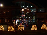 Dawsonville Annual Tree Lighting & Santa Photos